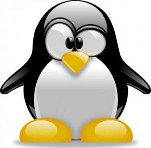penalizare_penguin